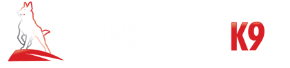 Foundation K9